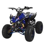 Квадроцикл HB-EATV1000Q2-4